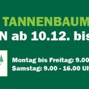 tannenbaumverkauf2016