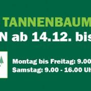 news-tannenbaumverkauf2017
