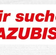 News-Azubis