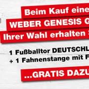 weber-genesis-gasgrill-fahne-tor-gratis