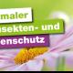 Beratungstag_Easylife